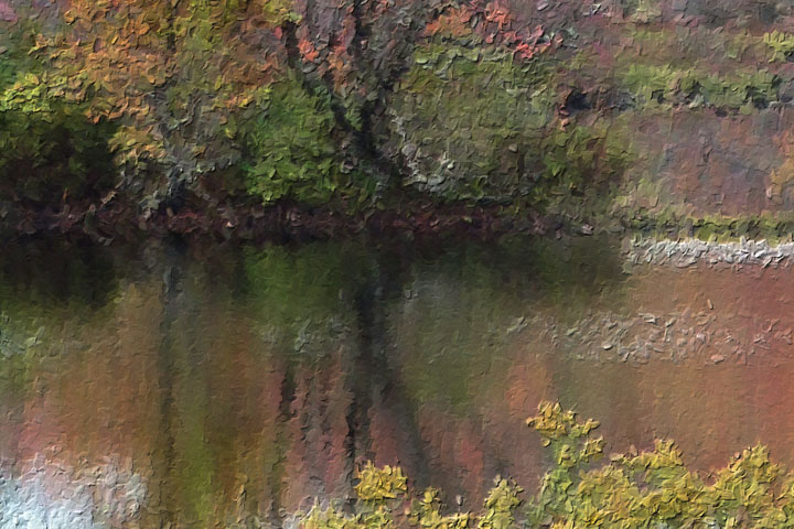 Golden Pond Closeup 5